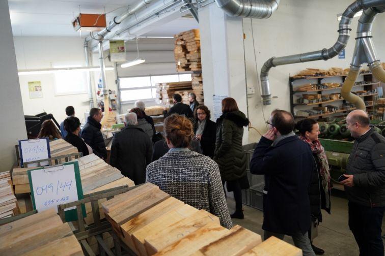 Začetek procesa - rezanje lesa